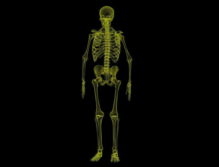 Radiografía de la estructura ósea humana solidificada por magnesio